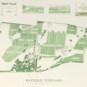 Foto Hotel: Mayfield Vineyard, Orange