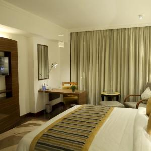 酒店图片: 阿迪亚公园萨诺瓦波蒂科酒店, 海得拉巴
