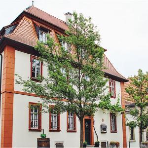 Hotelbilleder: Gästehaus Gebrüder Müller, Iphofen