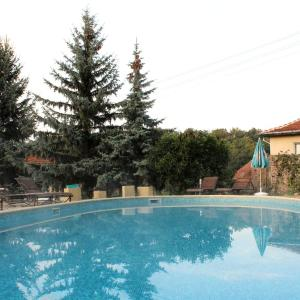 Φωτογραφίες: SPA Apartment in Pchelinski Bani, Pchelin