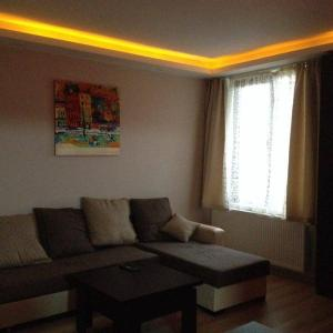 Hotellikuvia: Natia's Apartment in Bakuriani, Bakurianis Andeziti