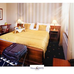 Hotel Pictures: Hotel Villa Conti, Písek