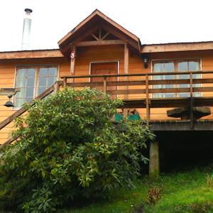 Фотографии отеля: Cabañas Kalfupulli, Puyehue