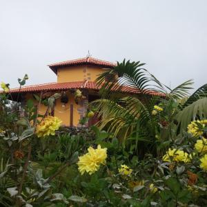 Hotel Pictures: Eco-house Chinyero, Garachico
