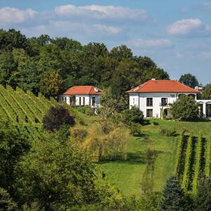 Hotellikuvia: Weingut Hirschmugl - Domaene am Seggauberg, Leibnitz