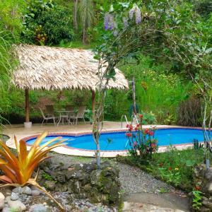 Hotel Pictures: Karibik Lodge Cahuita, Cahuita