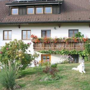 Hotel Pictures: Haus Blasi, Ibach