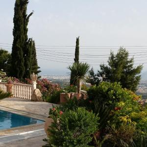 Hotel Pictures: Garden of Eden Villa, Paphos City