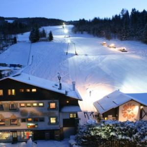 Hotel Pictures: Sonnenalm, Spital am Semmering
