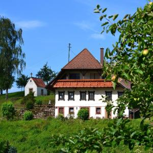 Hotel Pictures: Ferienhaus Hubhof, Oberharmersbach