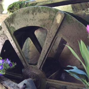 Hotel Pictures: Moulin de la Sambuc, Saint-Zacharie