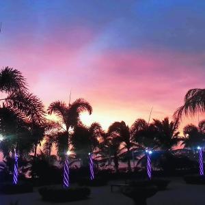 Fotografie hotelů: Aruba Surfside Marina, Oranjestad