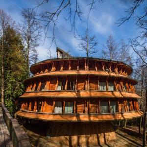 Hotel Pictures: Huilo Huilo Reino Fungi Lodge, Huilo Huilo