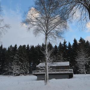 Photos de l'hôtel: Chalet Le Forestier, Bullange