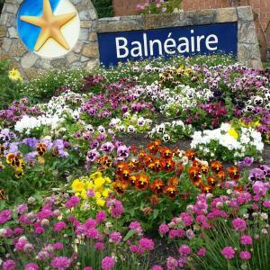 Φωτογραφίες: Balneaire Seaside Resort, Όλμπανι