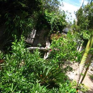 Фотографии отеля: Beach Serai, Порт-Маккуори