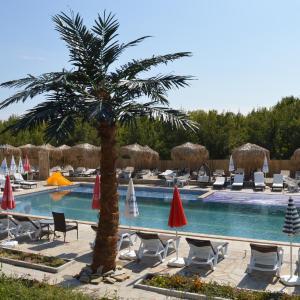 Hotelfoto's: Eco complex Miramar, Mineralni Bani