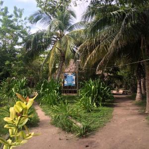 Hotel Pictures: Eco Hotel Las Palmeras, Isla Grande