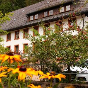Hotelbilleder: Gästehaus zum Goldenen Rössle, Gremmelsbach