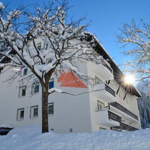 ホテル写真: Alpenhaus Montafon, Gargellen