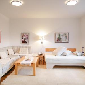 Φωτογραφίες: Guest Apartment Visoko, Visoko