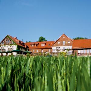 Hotelbilleder: Hotel Neue Höhe, Klingenberg