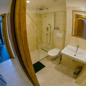 Hotel Pictures: Hotel Panský Dům Žamberk, Žamberk