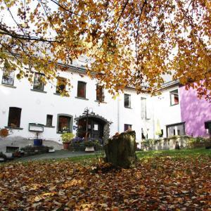 Hotel Pictures: Haus Feldmaus, Olzheim