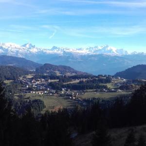 Hotel Pictures: Les Terrasses du Mont blanc, Le Praz de Lys