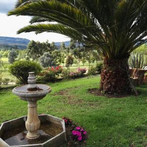 Hotel Pictures: Nido Verde - Cabaña, Iza