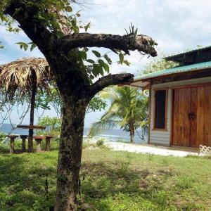 Hotellbilder: Treetops B & B Inn, San Juanillo