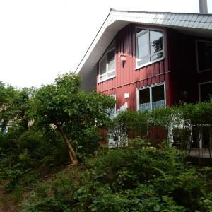 Hotel Pictures: Eichhörnchen I, Bremke