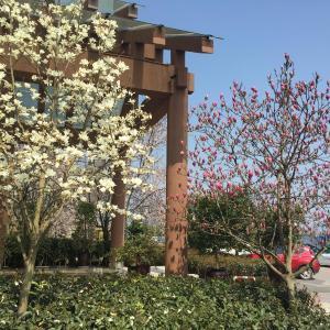 Hotel Pictures: Changshou Manhu Yashe Hotel, Changshou