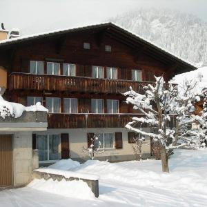 Hotel Pictures: Apartment Isenschmid - Oberfeld, Frutigen