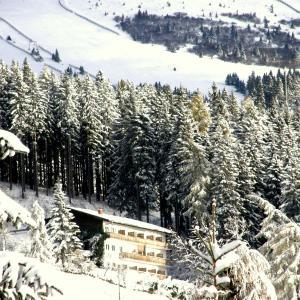 Hotel Pictures: Hotel Garni Gästehaus Karin, Sankt Stefan im Lavanttal