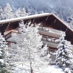 Hotel Pictures: Apartment La Colline.2, Champex