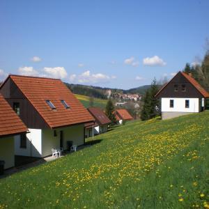 Hotel Pictures: Green Valley Park, Stárkov