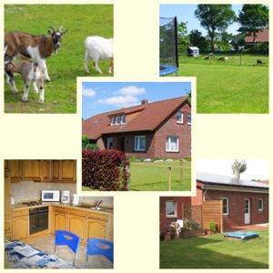 Hotel Pictures: Ferienhaus Vüst, Aurich