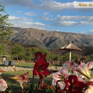 Фотографии отеля: Cabañas Alma de la Sierra, Carpintería