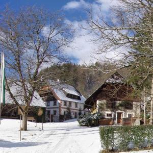 Fotos do Hotel: Feriengut Moarhof, Palfau
