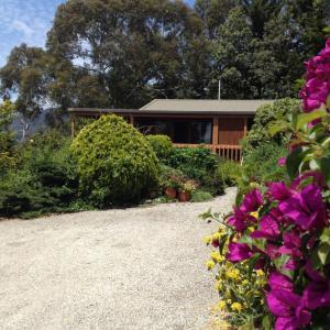 Hotellikuvia: Helgrah Cottage, Healesville