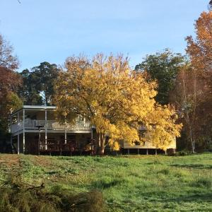 Hotel Pictures: Chestnut Brae Farmstay, Nannup