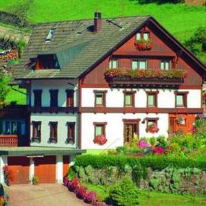 Hotel Pictures: Gästehaus Heimenberg, Bad Rippoldsau-Schapbach