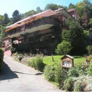 Hotel Pictures: Hotel Restaurant au Floridor, Thann