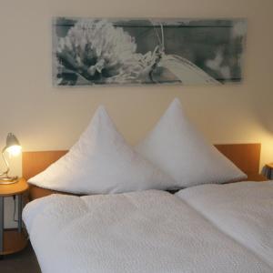 Hotelbilleder: Ferienhotel - garni - Carolaruh, Bad Elster