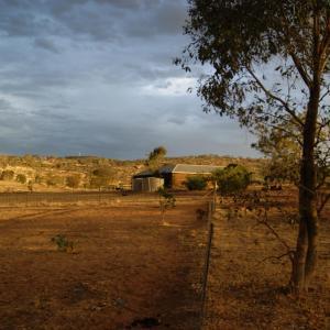 酒店图片: Farmers Roost, Baringhup