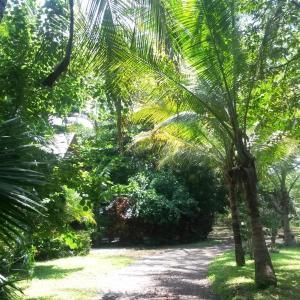 Hotel Pictures: Casa Mymy, Paraíso