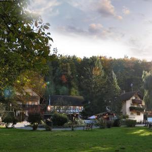 Hotelbilleder: Hotel Restaurant Paradeismühle, Klingenberg am Main