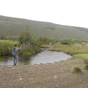 Hotellbilder: Piuke Mapu Patagonia Hostel, Cholila