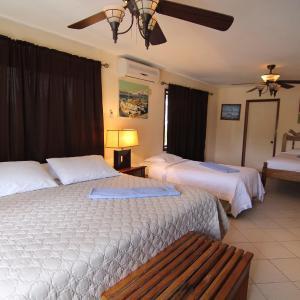 Hotel Pictures: Blue Marlin Beach Resort, Dangriga